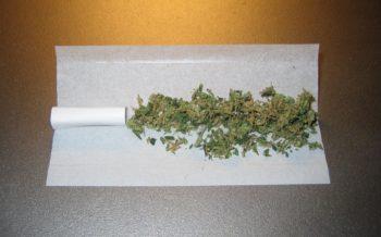 kiffen_cannabis_marihuana