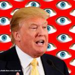 Donald_Trump_Watch_7