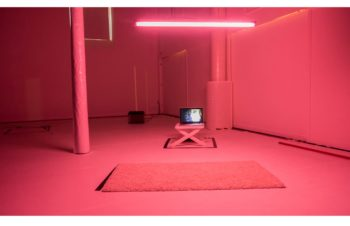 EIJF_pink_klein