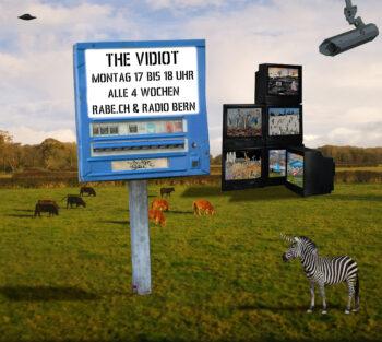 The Vidiot