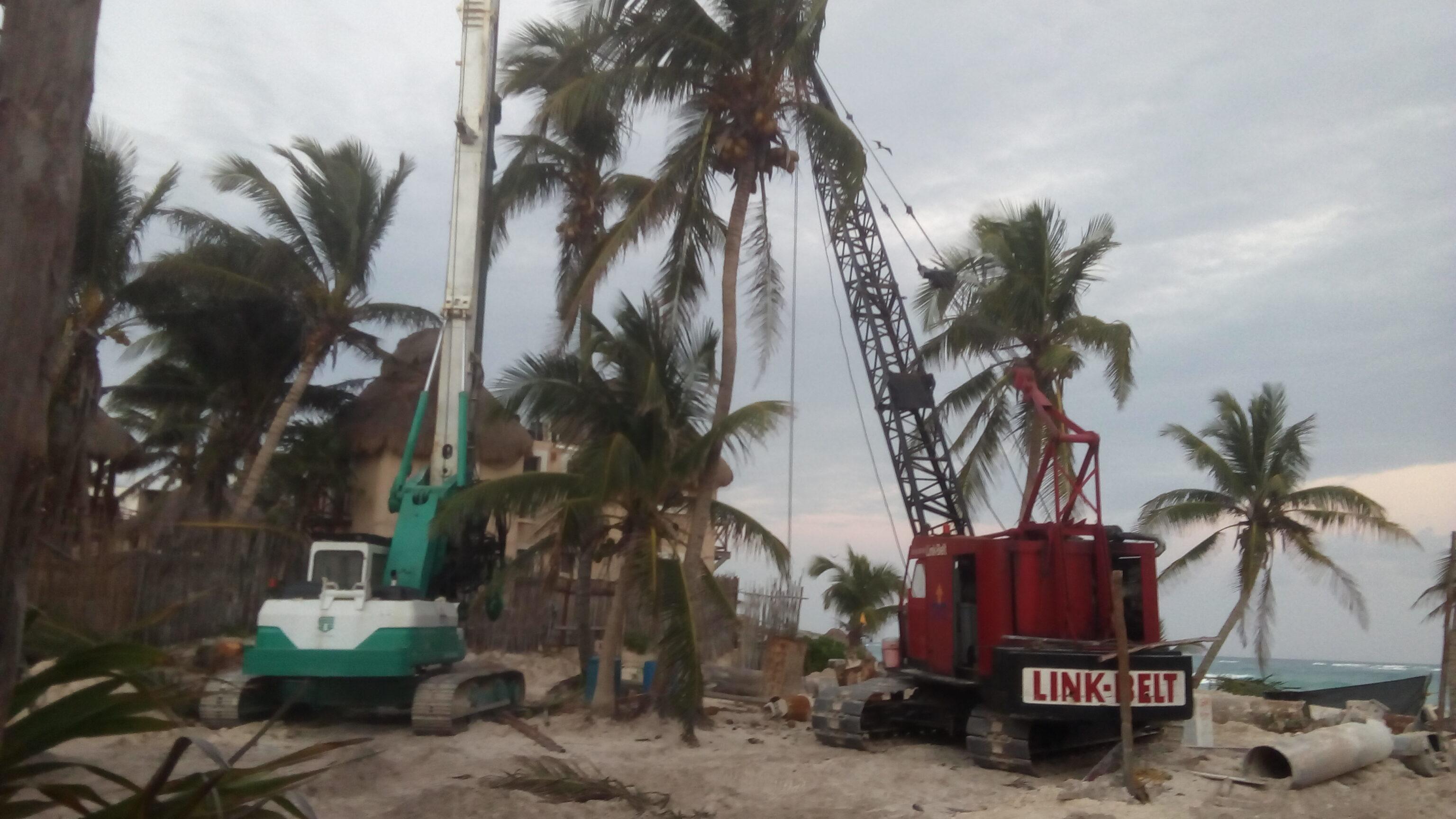 Im mexikanischen Tulum müssen Mangrovenwälder dem Massentourismus weichen