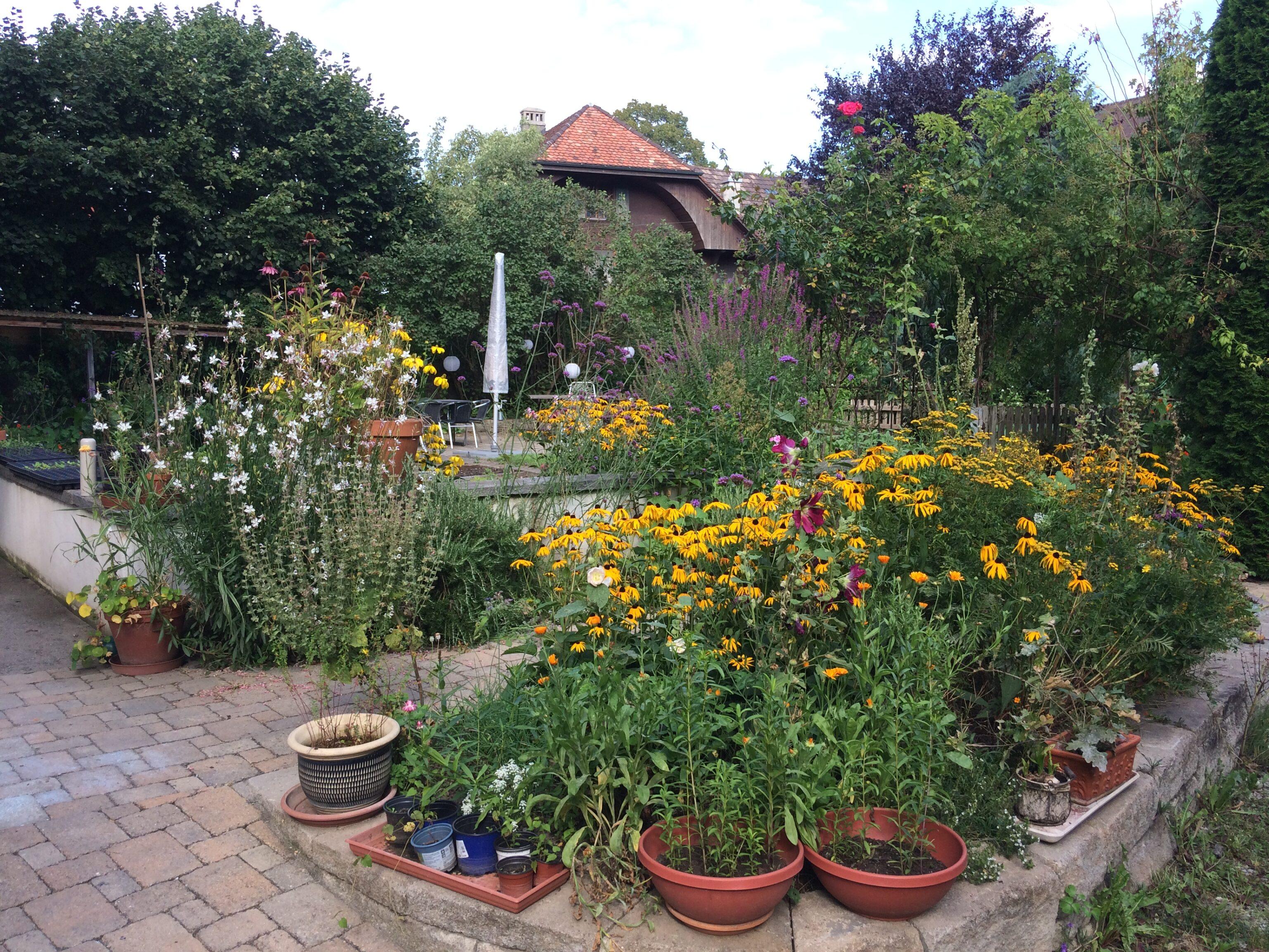 Unserhausprojekt in Urtenen-Schönbühl proben das alternative Wohnen